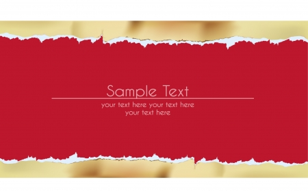 paper background with ripped golden border  Vector