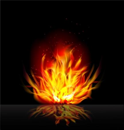 flamboyant: Fire background Illustration