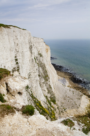 White cliffs south coast of Britain, famous place for archaeological discoveries and tourists destination  photo