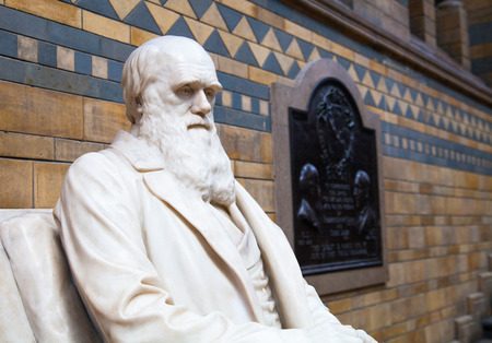LONDON, UK - AUGUST 11, 2014: Charles Darwin monument in National History Museum, is one of the most favorite museum for families in London. Imagens - 34133392