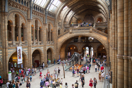national cultures: LONDON, UK - AUGUST 11, 2014: National History Museum, is one of the most favourite museum for families in London.