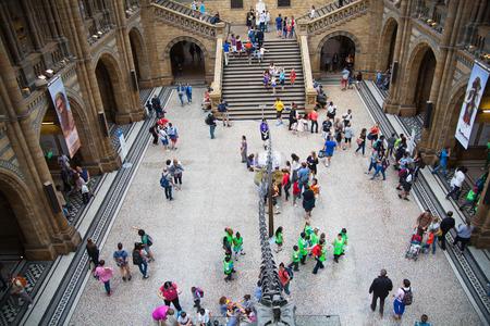ロンドン、イギリス - 2014 年 8 月 11 日: 国立歴史博物館はロンドンの家族のための最も好きな美術館の一つです。