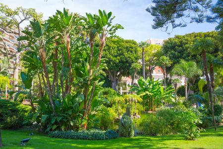 Monaco, Monte Carlo - September 17, 2016:  Jardins de la Petite Afrique. African garden in front of Grand casino Stock Photo