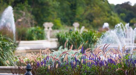 Italian gardens in Kensington, fountain and flowers