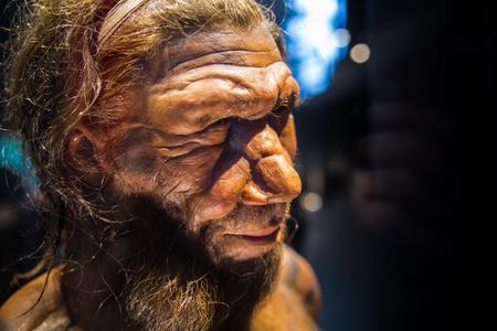 London, Großbritannien - 11. März 2018: Neandertaler Homo erwachsener Mann, basierend auf 40000 Jahre alten Überresten, gefunden bei Spy in Belgien. Nationales Geschichtsmuseum