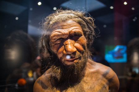 London, UK - March 11, 2018: Neanderthal Homo adult male, based on 40000 year-old remains found at Spy in Belgium. National history museum
