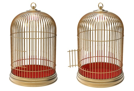3d render of  gold cage on a white background photo