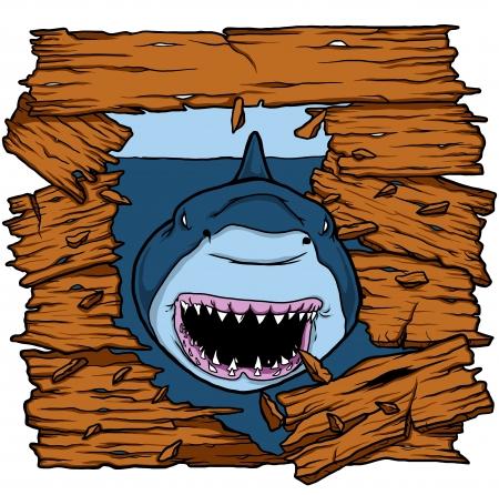 shark attack Stock Vector - 24007375