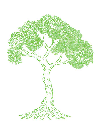 illustration of tree Illustration