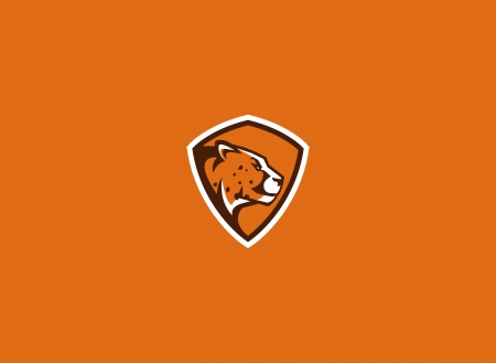 cheetah sport mascot  Illustration