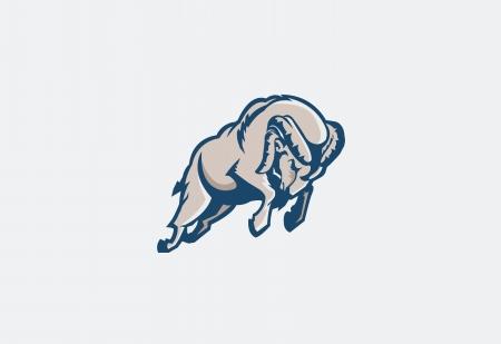 bocinas: carneros