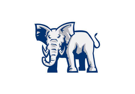 elephant head: elephant sport