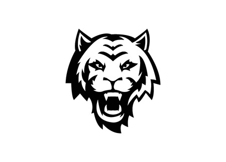 tiger head Stock Vector - 24540127