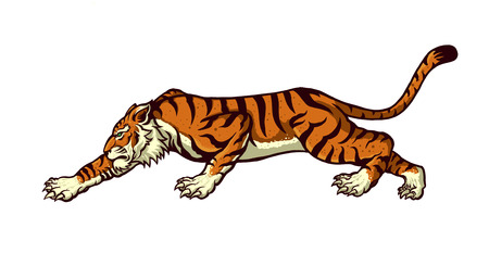 silueta tigre: tigre Vectores