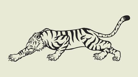 Tigre Banque d'images - 44220835