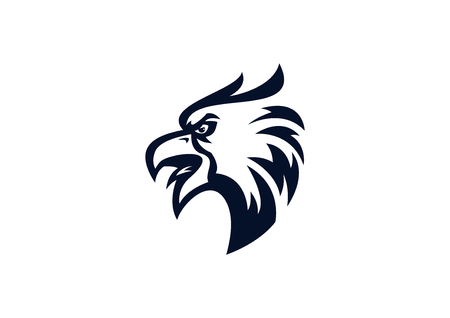 eagle head mascot Illustration