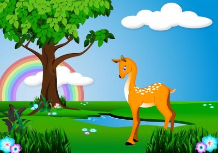 animal themes: Deer cartoon Illustration