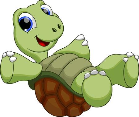 green sea turtle: Cute turtle cartoon