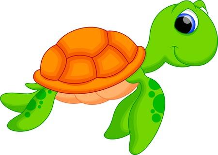 tortuga de caricatura: De dibujos animados lindo de la tortuga