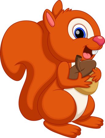 pine nut: Cute squirrel cartoon
