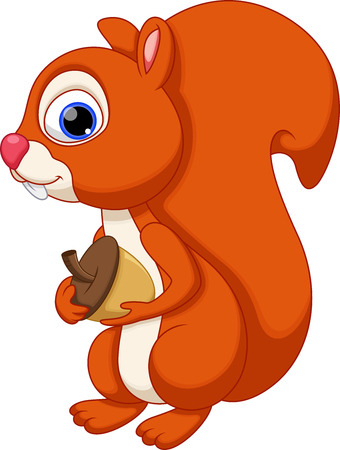 Cute squirrel cartoon Vector