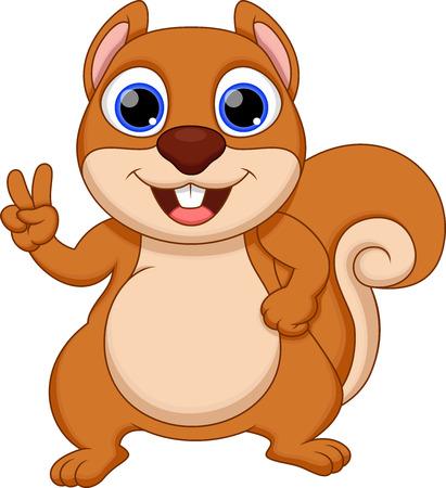 squirrel isolated: Cute  squirrel cartoon
