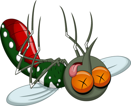 Death mosquito cartoon  Illustration