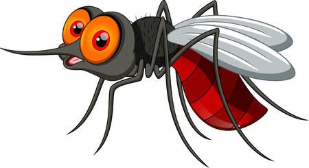 Cute mosquito cartoon  Vector