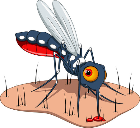 Mosquito sucks blood to the skin Illustration