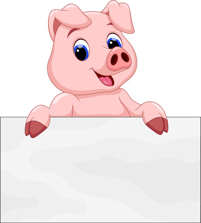 cute pig with a white background board