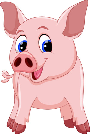 young animal: Cute pig cartoon