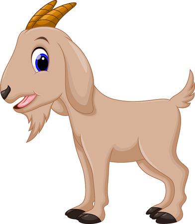 Cute goat cartoon  Vector
