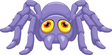 arachnid: Cute tarantula cartoon