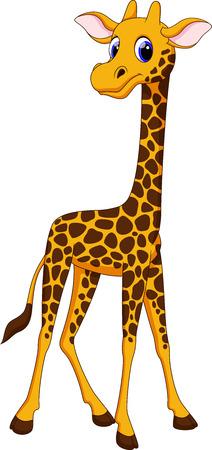 jirafa cartoon: Linda jirafa de dibujos animados Vectores