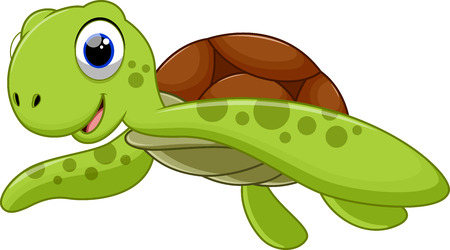 Cute turtle cartoon