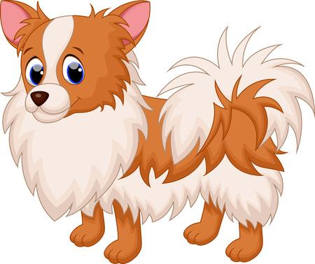 rozkošný: Roztomilý čivava pes cartoon