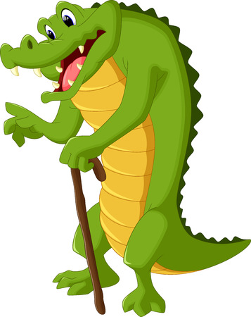 while: Crocodile standing while holding a stick