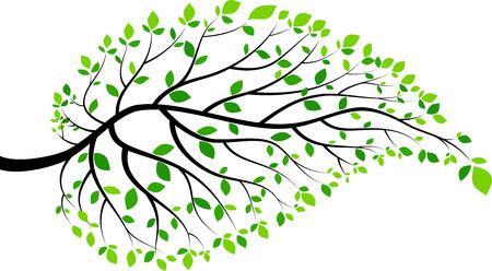 Illustration der grünen Blättern und Zweigen