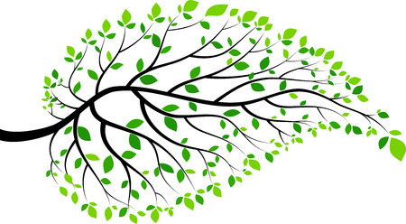 Illustration of green leaves and twigs