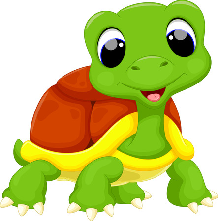 baby turtle: Cute turtle cartoon