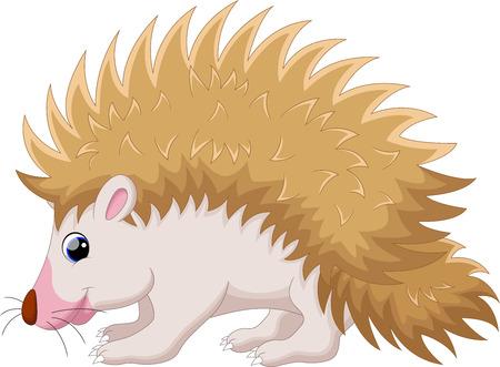 cartoon hedgehog: Cute hedgehog cartoon Illustration