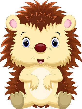 pygmy: Cute hedgehog cartoon Illustration