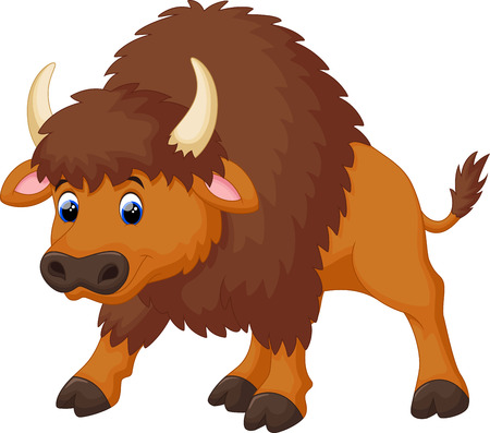 buffalo grass: Cute bison cartoon Illustration