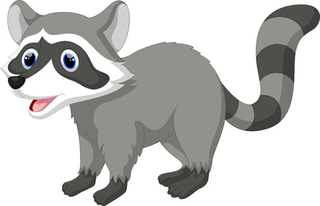 racoon: Cute raccoon cartoon Illustration