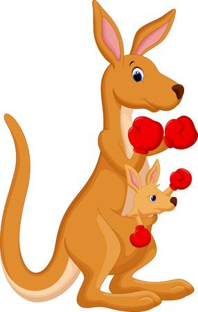 kangaroo mother: Kangaroo boxing