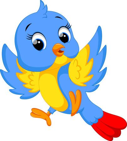 pajaro dibujo: Caricatura de aves lindo  Vectores