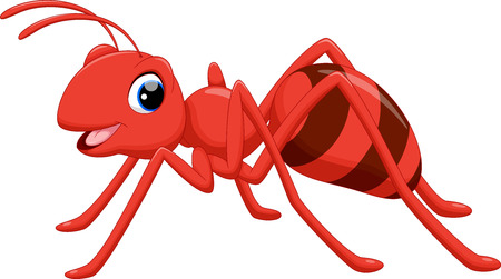 Illustration of ant cartoon on white background
