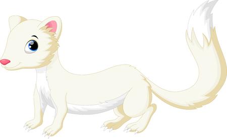 on white: Cute white Least Weasel