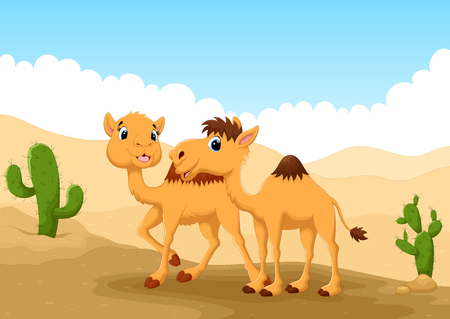 camels: Illustration of camels in desert