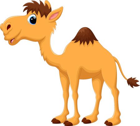 Ilustración de dibujos animados lindo del camello